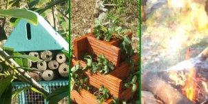Billericay Community Garden