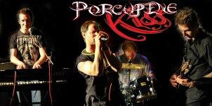 Porcupine Kiss