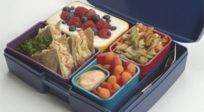 A good first lunch box for 2013