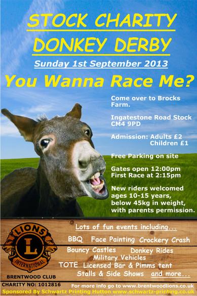 Stock Charity Donkey Derby 2013