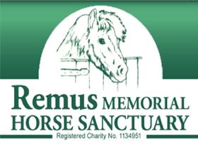 remus_header3