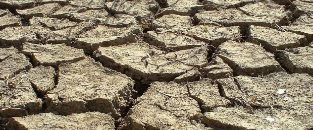 drought-land,1366x768,58162