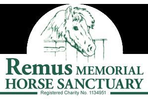 remus-newlogo