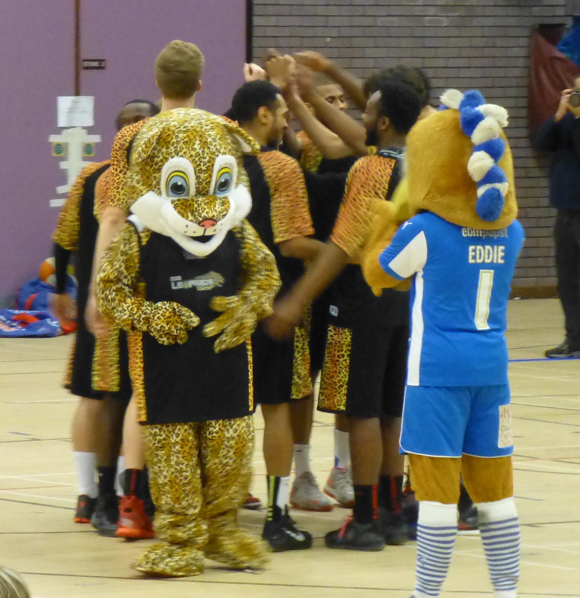 Salford City Mascot: GALLERY: Essex Leopards 83