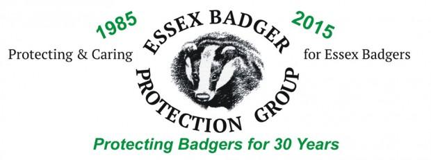 EBPG 30 Years Logo