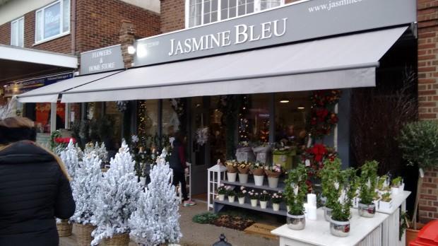 2015-11-29 052 Jasmine Bleu (Chris)