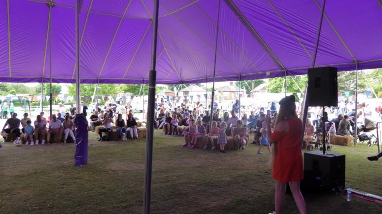 2016-06-11 Strawberry Fair (Paul) 14