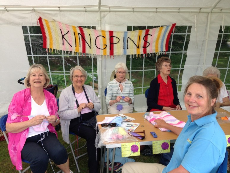 2016-06-11 Strawberry Fair (Xanthe) 01 Kingpins Knitting Group