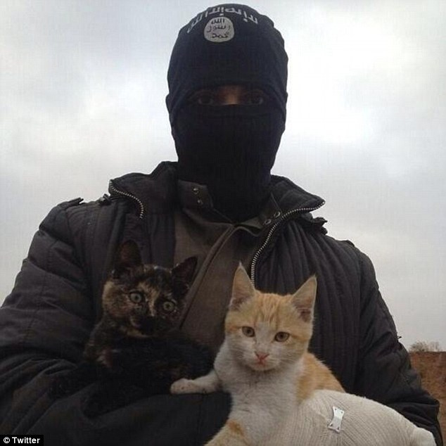 isis-cats