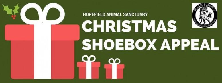 hopefield-shoebox
