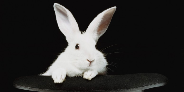 White Rabbit in Top Hat