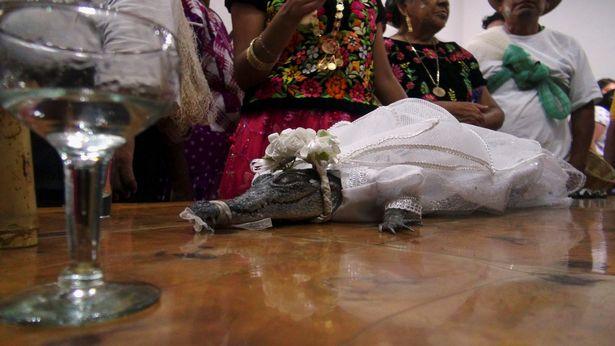 Croc bride